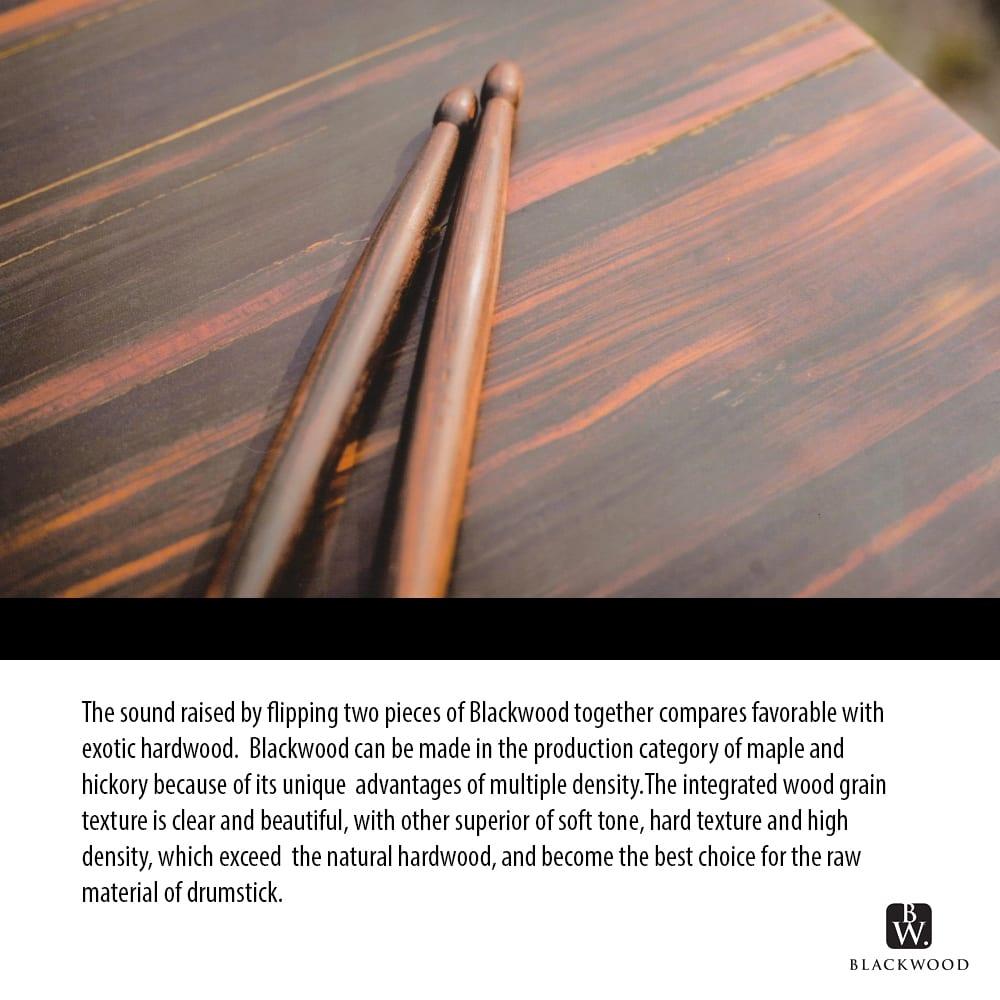 Trixon Blackwood Drumsticks 5A Size – Brown
