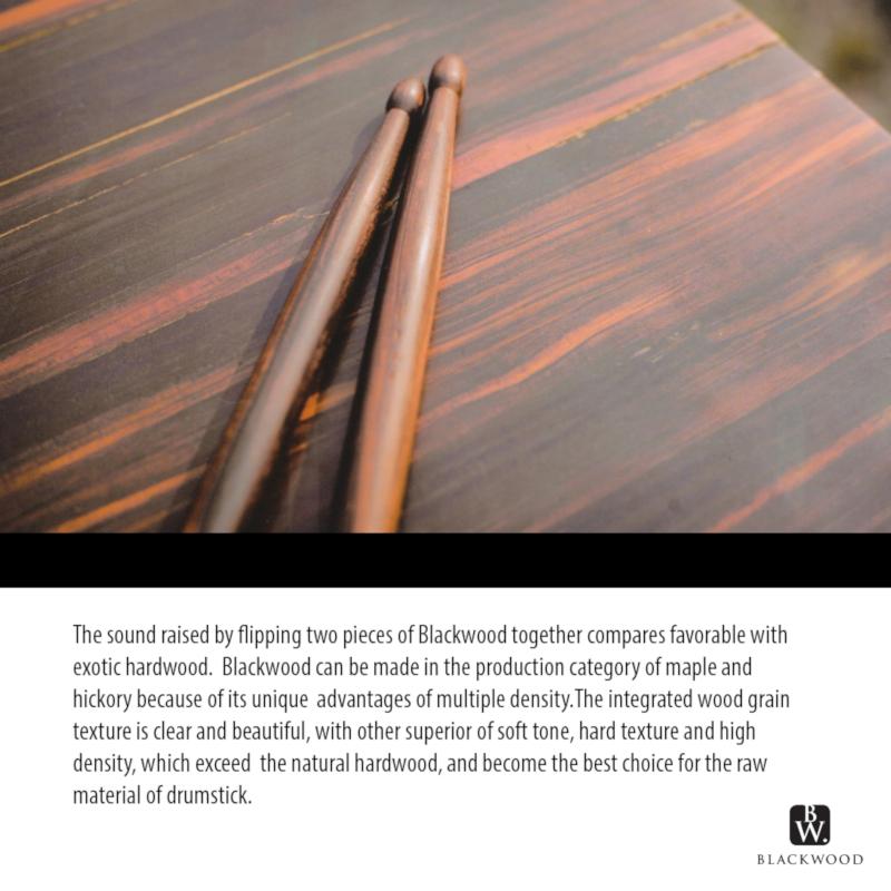 Trixon Blackwood Drumsticks 5A Size - Brown